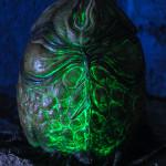 Alien egg (10)